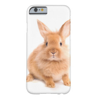 Lapin Coque iPhone 6 Barely There