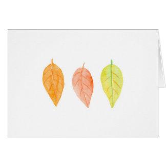 l'aquarelle quotidienne laisse des cartes de note