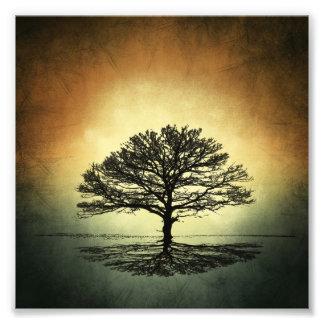 L'arbre à l'arrière-plan impression photo