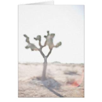 L'arbre de Joshua Carte