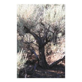 L'arbre Papeterie