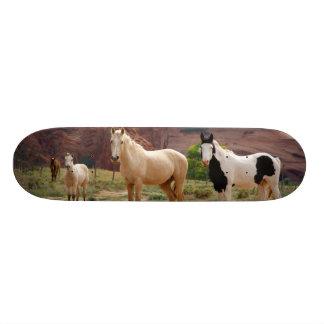 L'Arizona, réserve indienne de Navajo, Chinle, Skateboard Customisable
