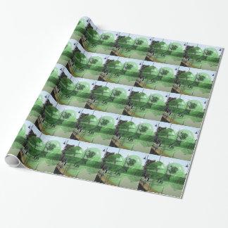 Lawn_Bowls_Competition, _ Papier Cadeau