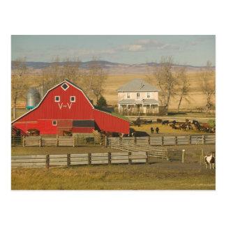 Le Canada, Alberta, crique de Pincher : Grange et Carte Postale