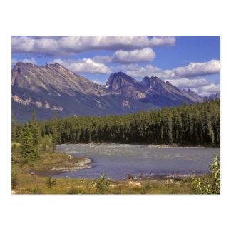 Le Canada, Alberta, parc national de jaspe. Grand Carte Postale