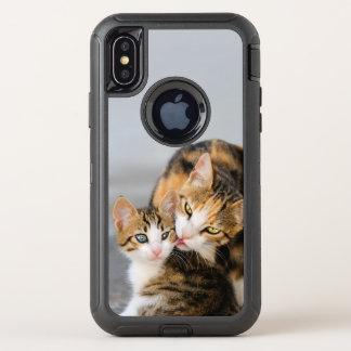 Le chat de mère aime la photo animale d'animal