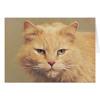 Le chat de Tom obtiennent bien bientôt Cartes De Vœux