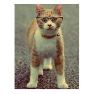 Le chat jaune bascule les verres cartes postales