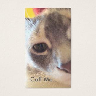 Le chat m'appellent carte