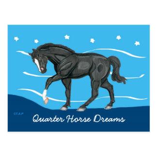 Le cheval quart rêve la carte postale
