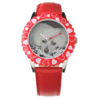 Le chien blanc badine la montre inoxydable montres