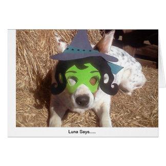 le chien, chiens, Halloween, withch, amusement, Carte