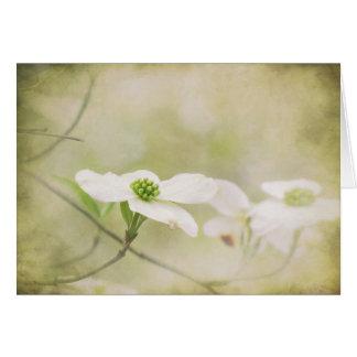 Le cornouiller fleurit carte de note