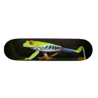 Le Costa Rica, grenouille d'arbre aux yeux rouges  Mini Skateboard 18,4 Cm