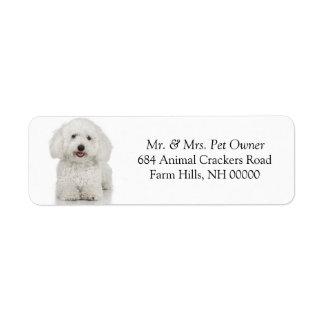 Le courrier d'adresse de retour de chien maltais étiquette d'adresse retour