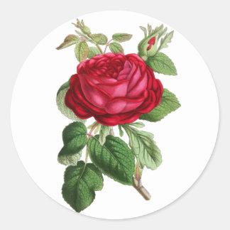 Le cru floral rouge s'est levé sticker rond