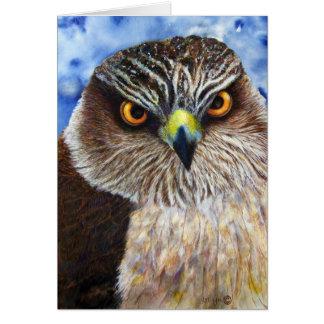 Le faucon observe la carte de voeux
