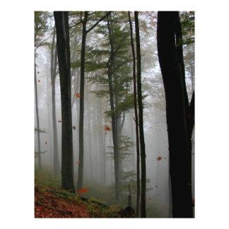 LE FEUILLE MYSTÉRIEUX D'ARBRES FORESTIERS TOMBE CO PROSPECTUS 21,6 CM X 24,94 CM