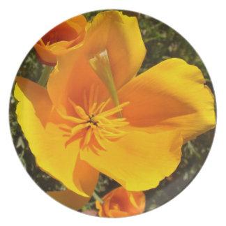 Le fleur sauvage de pavot de Californie fleurit le Assiettes En Mélamine