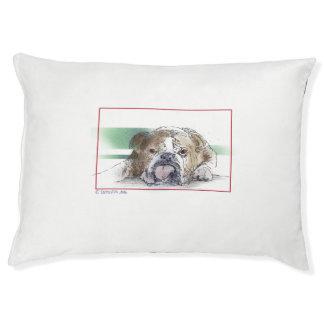 Le général lit pour chien