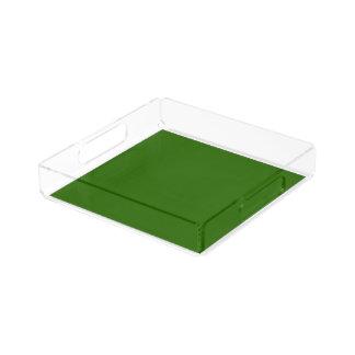 Le modèle acrylique du plateau do-it-yourself de