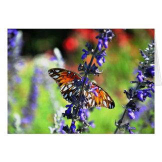 Le papillon obtiennent bien bientôt carte de vœux