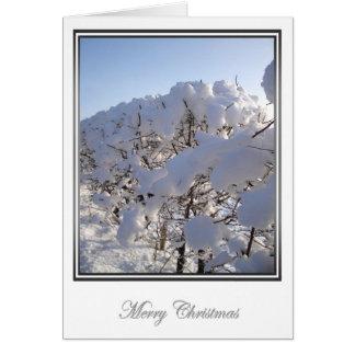 Le pays des merveilles 4 d'hiver carte