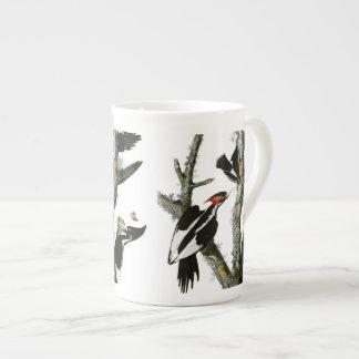 Le pivert Ivoire-affiché d'Aububon dans l'arbre de Mug