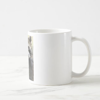 Le raton laveur amical mug
