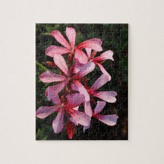 Le rose fleurit le puzzle de la photo 8x10 avec la