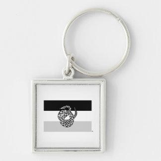 Le sigma NU marquent le gris Porte-clé Carré Argenté