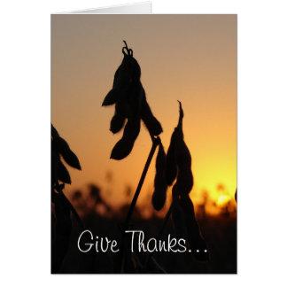 Le soja, donne des mercis… Pour les agriculteurs, Carte