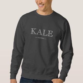 Le sweatshirt des hommes gris-foncé d'anciennes