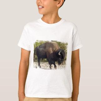Le T-shirt de l'enfant américain de Buffalo