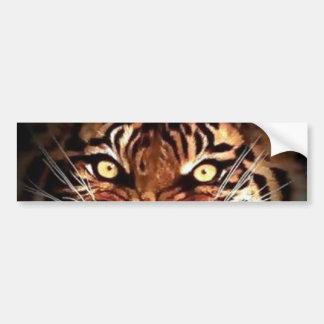 Le tigre de Sumatran observe l'adhésif pour Autocollant De Voiture