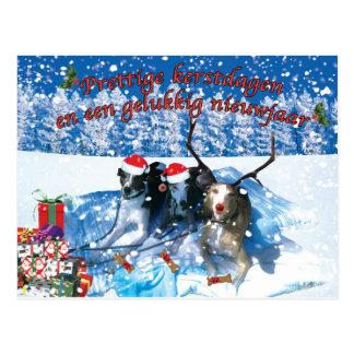 Le whippet kerstkaart cartes postales