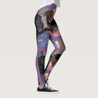Leggings animaux familiers 1