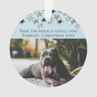 Les anges de The Herald d'écorce de Noël chantent