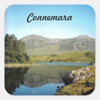 Les autocollants de Connemara