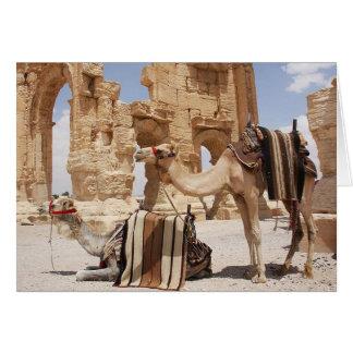 Les chameaux dans loin place la carte de voeux