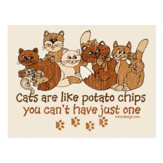 Les chats sont comme des pommes chips cartes postales