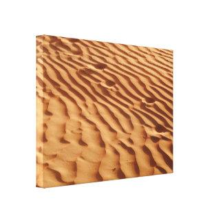 Les dunes de sable ont enveloppé la toile