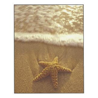 Les Etats-Unis, Hawaï, Maui, Maui, Kihei, étoile