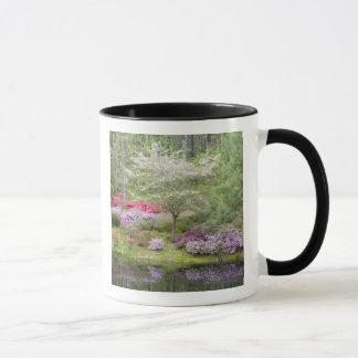 Les Etats-Unis, la Géorgie, montagne de pin. Un Mug