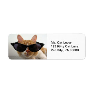 Les lunettes de soleil de port de chat renvoient d étiquette d'adresse retour