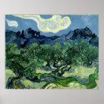 Les oliviers de Vincent van Gogh (1889) Posters