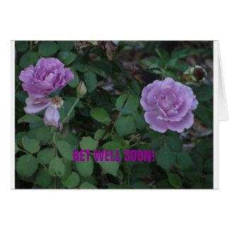 Les roses de Lavendar/obtiennent bien Carte De Vœux