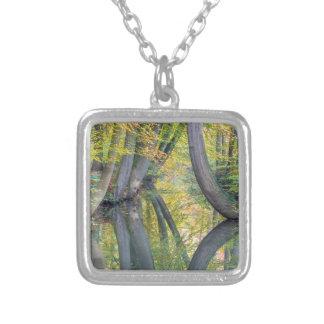 Les troncs d'arbre de chute avec la réflexion dans collier