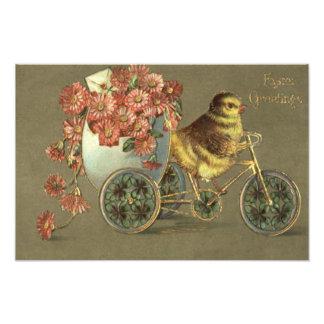 Lettre d'amour de vélo de chrysanthème d'oeufs de photos