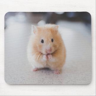 Leuke hamster muismat